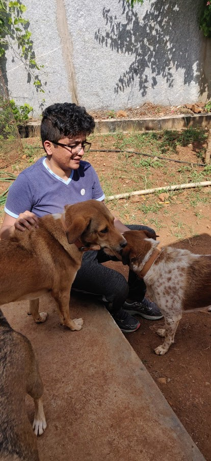 That is myself surrounded by my dogs, at my parents' dog shelter in Bangalore.